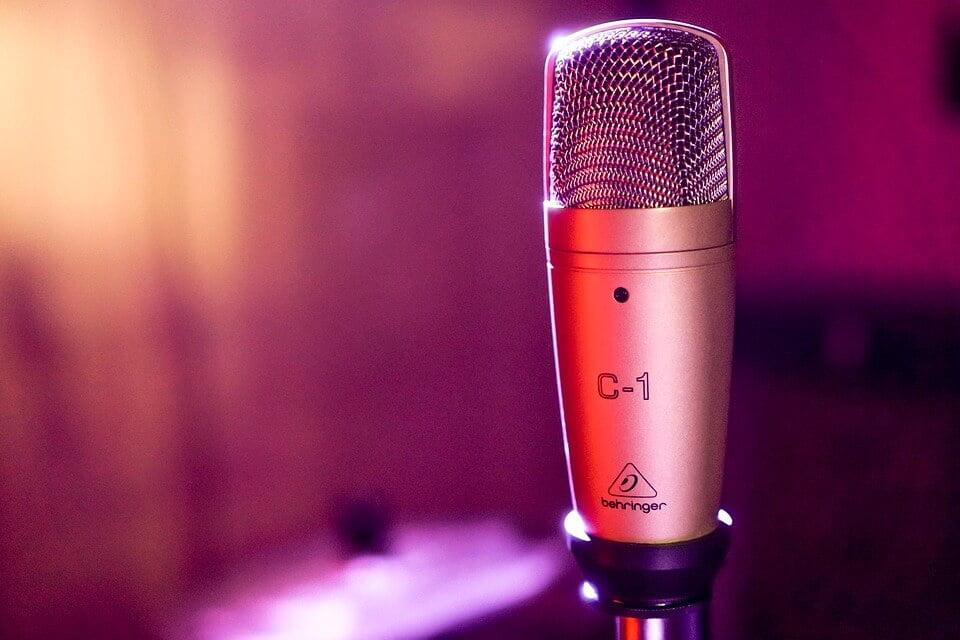 На фото изображен микрофон.